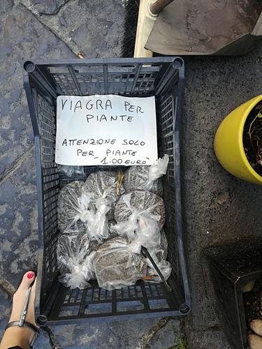 Concime per piante con un cartello simpatico a Castellammare di Stabia
